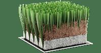 hierba-sintetica-rugby